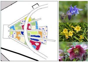 Klooster_Huissen_tuinontwerp - Project_klooster_huissen_tuinontwerp_beplanting_001.jpg